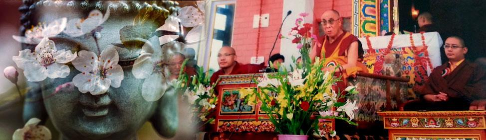 Il Buddhismo Tibetano