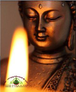 Praticare Yin Yoga e Yoga Nidra insieme è sempre bellissimo. Questa volta lo facciamo per una buona causa.